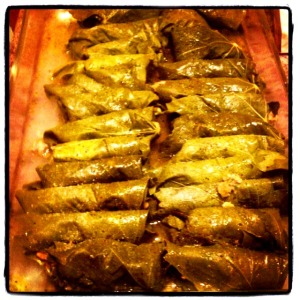 dolmades finished