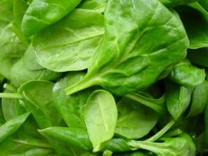 spinach420