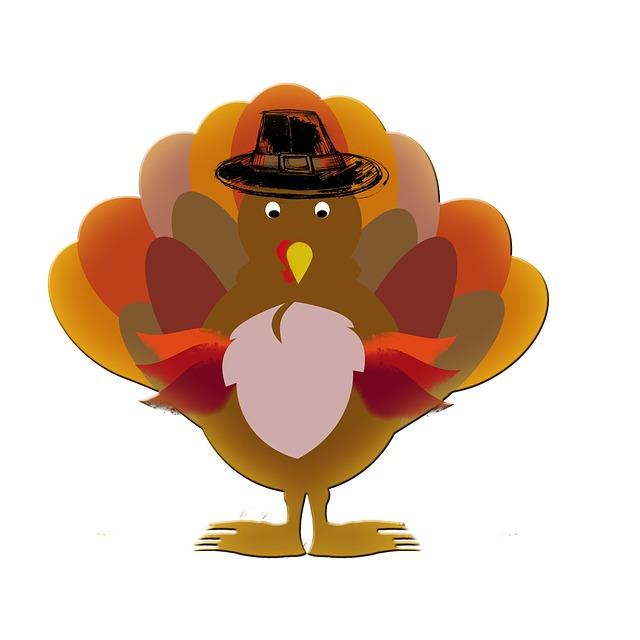 turkey-504378_640 (1)